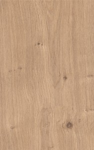 DVNV528837 New England oak