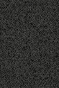 6145, Thu Feb 07, 2013, 3:14:59 PM, 8C, 3694x5266, (1159+0), 100%, Forbo Coral do, 1/40 s, R67.2, G39.5, B61.1