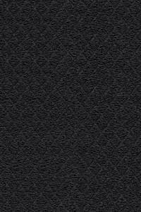 6150, Fri Feb 08, 2013, 2:43:35 PM, 8C, 3694x5266, (1159+0), 100%, Forbo Coral do, 1/40 s, R67.2, G39.5, B61.1