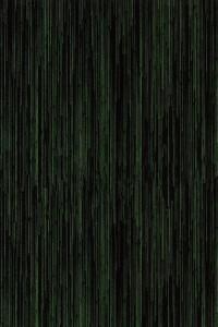 3208R, Wed Feb 29, 2012, 1:37:09 PM, 8C, 3694x5258, (1159+0), 100%, Forbo stalen z, 1/40 s, R68.2, G39.2, B60.5